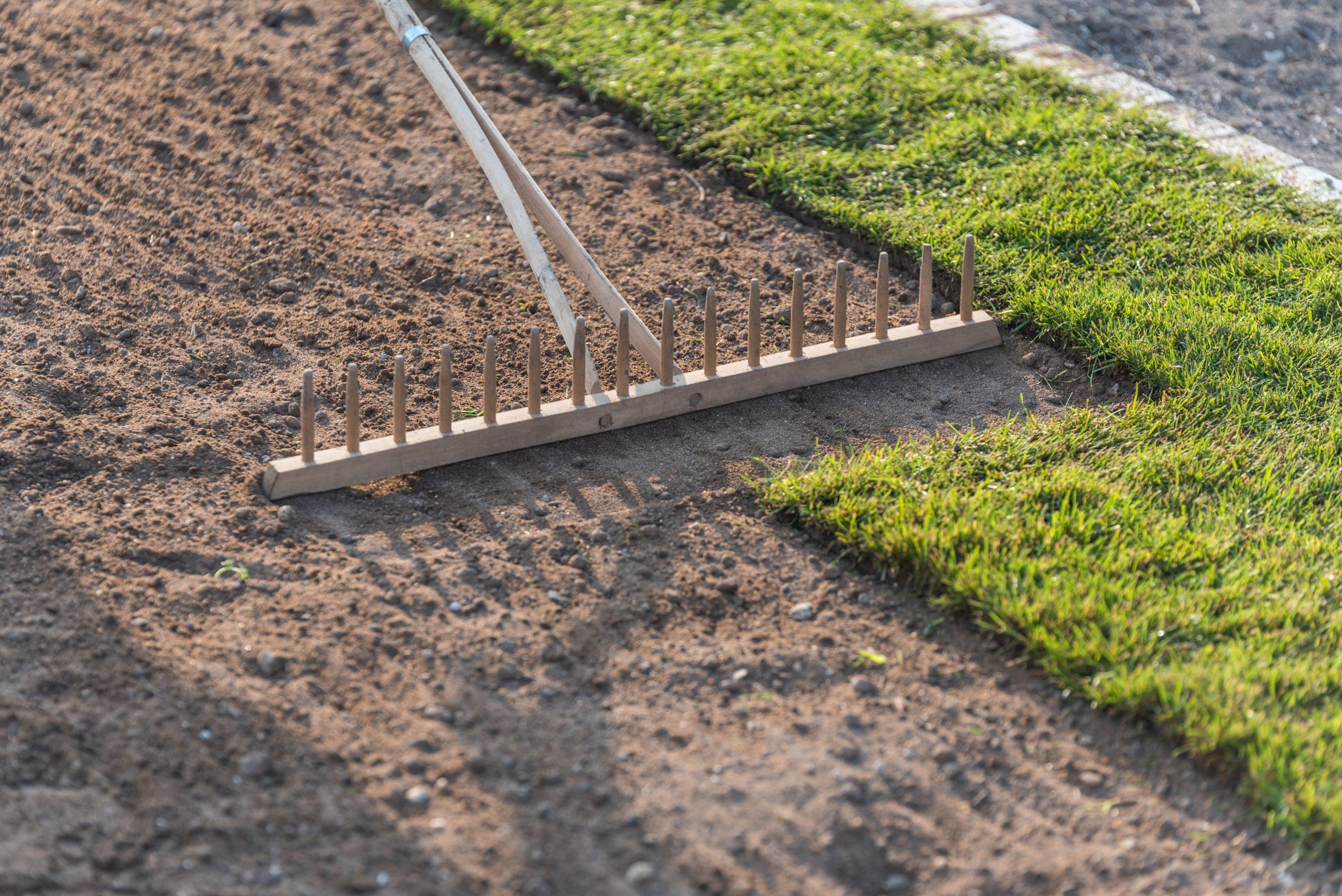 Rasenfläche mit Rollrasen anlegen